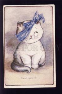 073639 Funny KITTEN w/ Bow After Wrestling UnSign. Vintage PC