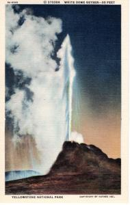 YELLOWSTONE NATIONAL PARK.  Haynes Linen Series. 37038A.