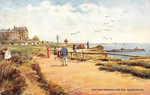England Bournemouth, West Cliff Promenade and Pier, Seagulls Oilette 1905