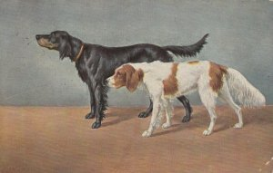 2 DOGs ; 1912