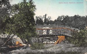 Waterloo Wisconsin~Victorian Ladies on Rustic Bridge~Field Fences~c1908 Postcard