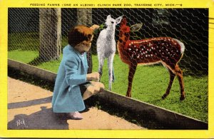 Michigan Traverse City Clinch Park Zoo Girl Feeding Fawns One An Albino 1953