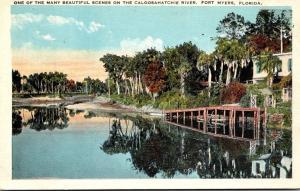 Florida Fort Myers Caloosahatchee River Scene