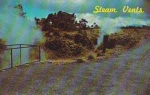 Hawaii Hilo Steam Vents Hawaii Volcanoes National Park