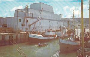 RIVIERE AU RENARD (Fox River), Draggers Unloading Catch, Quebec, Canada, PU-1969