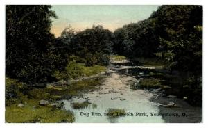 Early 1900s Dog Run near Lincoln Park, Youngstown, OH Postcard *5N21
