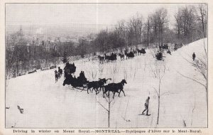 MONTREAL, Quebec, Canada, 1900-1910s; Driving In Winter On Mount Royal