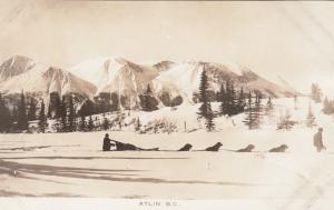 RP: Dog sled team in snow , ATLIN , B.C. , Canada , 1910s