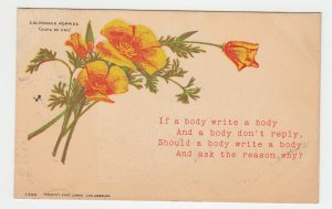 P2234 old postcard california poppies if a body writes a body etc postally used