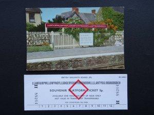 Wales LLANFAIRPWLLGWYNGYLLGOGERY.....& Souvenir Platform Ticket - Old Postcard