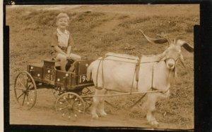 RP: Boy in a goat Cart , 1930-40s