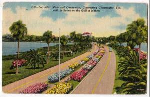 Causeway, Clearwater Fl