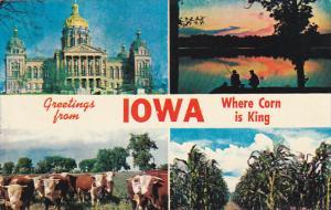Greetings From Iowa Where Corn Is King 1964