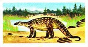 Brooke Bond Tea Trade Card Prehistoric Animals No 10 Plateosaurus
