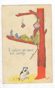 Dog  trees  a Hobo, PU-1906