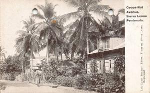 Cocoa Nut Avenue Sierra Leone Peninsula