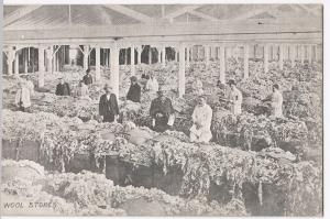 Australia; Wool Stores PPC, Adelaide PMK 1907 From South Australian Series