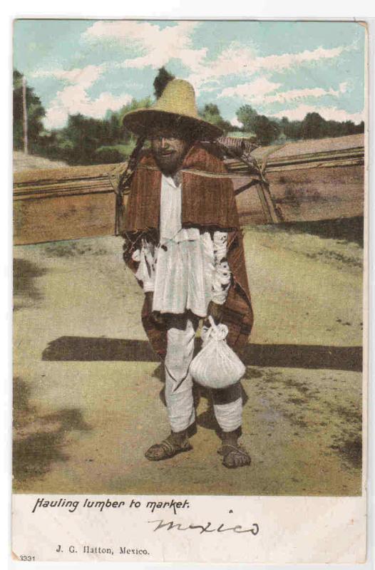 Hauling Lumber to Market Mexico 1907c postcard