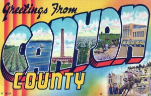 ID, Canyon County, Idaho Linen Large Letter Postcard