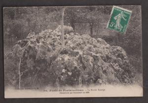The Sponge Rock In Fontanebleau Forest - Used