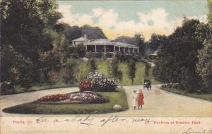 Pavilion At Bradley Park, PEORIA, Illinois, PU-1906
