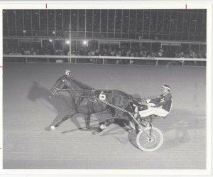 WINDSOR RACEWAY Harness Horse Race , ANNIE IVY winner, 1983