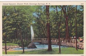 New York Syracuse Island Spouter In Geyser Park