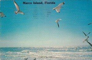 Marco Island Florida 1977