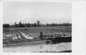Nederlands INDIE Stamp Working The Fields Real Photo Postcard