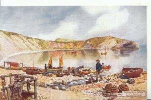 Dorset Postcard - Picturesque Dorset - Lulworth Cove - Ref 16184A