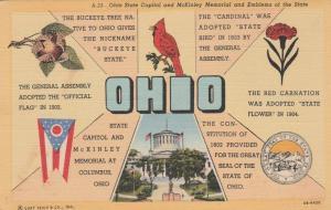 Ohio the Buckeye State - Bird Cardinal - Flower Red Carnation - Linen