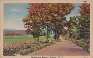 New York Greetings From Odessa 1950 Curteich