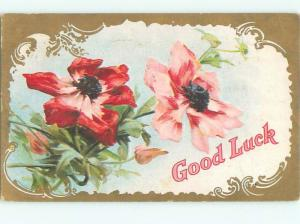 Divided-Back BEAUTIFUL FLOWERS SCENE Great Postcard AA2496