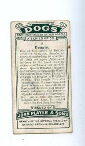 166931 BEAGLE by WARDLE John Player CIGARETTE card ADVERTISING