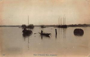 Singapore View of Tanjong Rhoo Boats Lake Postcard