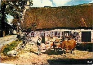 Postcard Modern Limousin Farm thatched Cows hitch Folklore