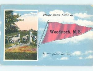 Divided-Back PENNANT POSTCARD Woodstock New Brunswick NB HM5258