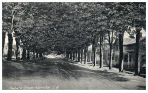 818  NY  Hannibal    Auburn Street