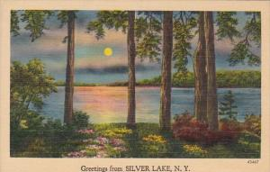 New York Greetings From Silver Lake 1948