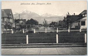 Livingston, Montana Postcard Yellowstone Avenue Residential Street Scene c1910s