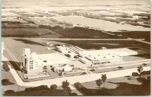 Los Angeles California Postcard Western Home of ANHEUSER-BUSCH Budweiser 1950s
