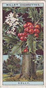 Wills Vintage Cigarette Card Flowering Trees &  Shrubs 1924 No 25 Common H...