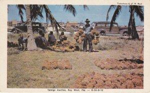 KEY WEST, Florida, 1940-60s; Sponge Auction