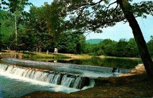 Pennsylvania Ole Bull State Park Along State Route 144 Near Oleana