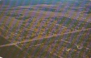 Florida Marion County Rainbow Acres Aerial View