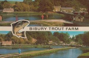 Bibury Trout Fish Farm Gloucester Postcard