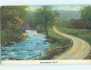c1910 ROAD Adirondacks - Shandelee In Callicoon By Bethel & Liberty NY i1513