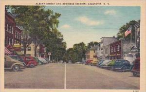 New York Cazenovia Albany Street And Business Section