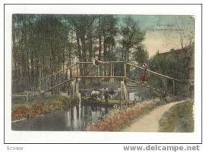 Eine Bank im Spreewald, Germany, 1900-10s