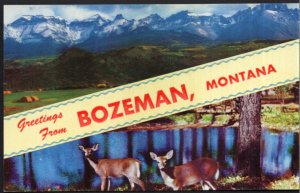 Greetings From BOZEMAN Montana SplitView Scenery Deer - Chrome